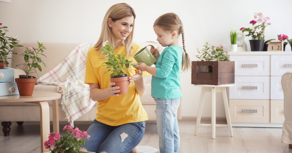 Indoor gardening - bring a little of the outside to your apartment!
