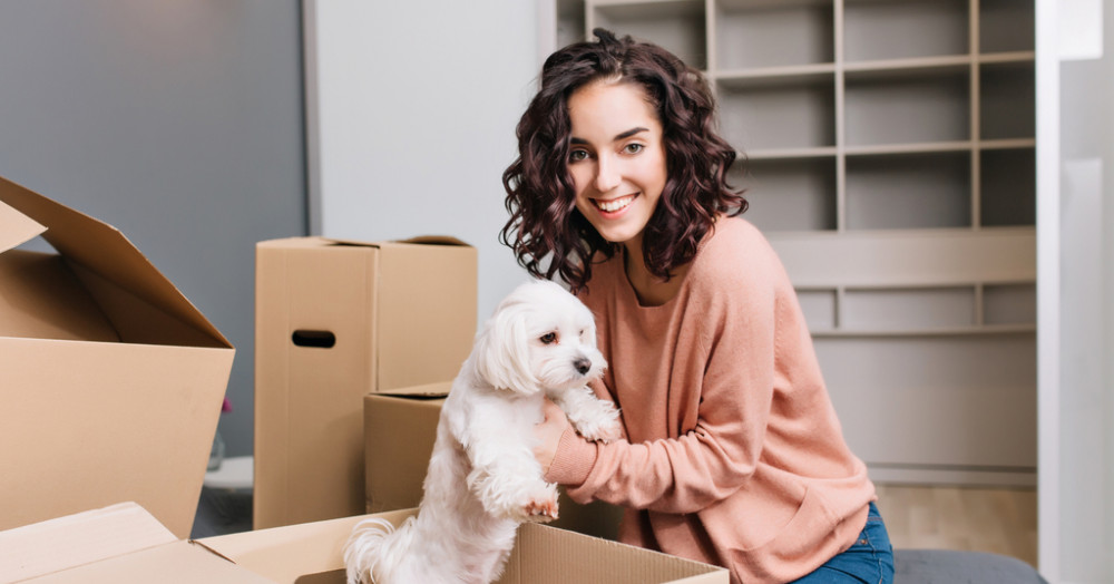 Top tips for renting with a pet